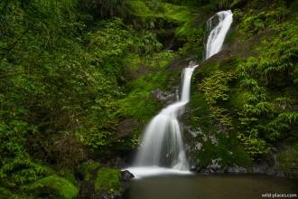 Waiotemarama Waterfall, North Island, New Zealand