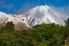 Mt Taranaki, Egmont National Park, North Island, New Zealand