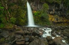 Dawson Falls, Egmont National Park, North Island, New Zealand