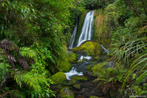 Egmont National Park, Wilkies Pools Loop Track, North Island, New Zealand