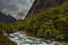 Fjordland NP, South Island, New Zealand