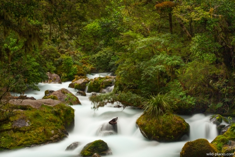 Lake Marian Falls, Fjordland NP, South Island, New Zealand