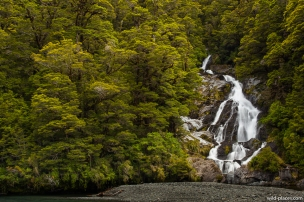 Fantail Falls, Haast Pass, South Island, New Zealand
