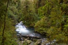 Sendero Cascadas Escondidas, Parque Pumalín