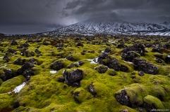 Lava Field, Snæfellsnes near Hellnar