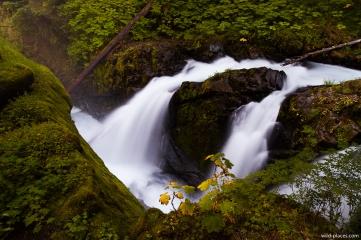 Sol Duc Falls, Olympic NP, WA, USA