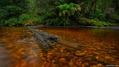Styx River, Styx Valley