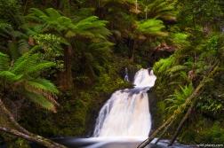 Hogarth Falls, Peoples Park, Strahan