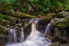 Lucy Creek, Corinna