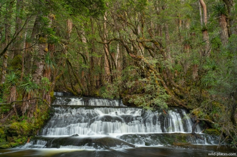 Cephissus Falls, Pine Valley, Cradle Mountain-Lake St Clair NP