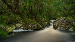 Waterfall Walk, Cradle Mountain NP