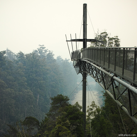 Tahune Airwalk