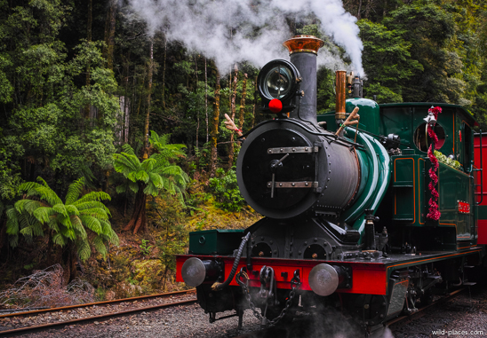 The West Coast Wilderness Railway