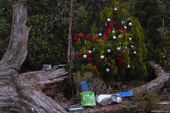 Christmas im Cradel Mountain NP