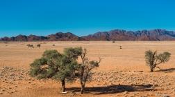View from Elim Dune, Sossusvlei, Namibia