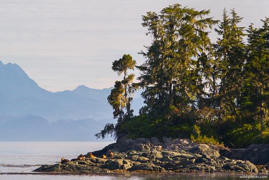 Telegraph Cove, Vancouver Island, BC, Canada